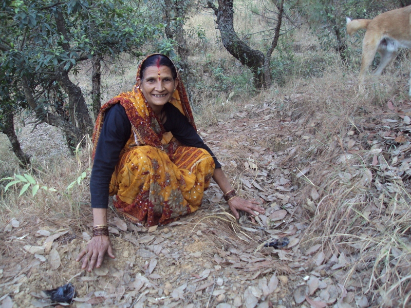 Van Panchayats – Keeping Forests Healthy And People Happy!