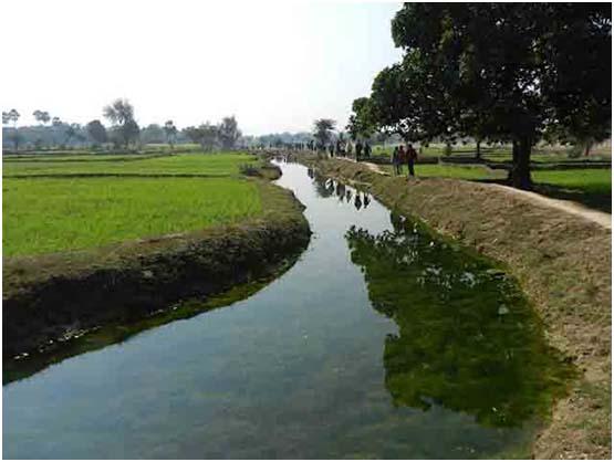 TBI Videos: Magadh Jal Jamaat Helps Revive 2000-year old Flood Water Harvesting Systems in Gaya, Bihar