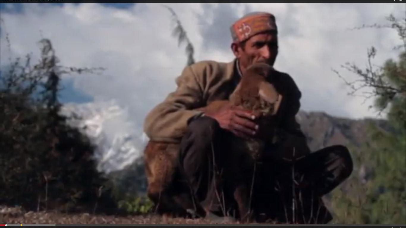 Corporate Initiative: Help Atmaram And His Sheep Survive Harsh Winters (Tata Capital's 'Half Stories' Series)