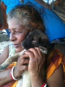 Pratima Devi is a ragpicker who has been single-handedly feeding over 70 dogs since almost 30 years!