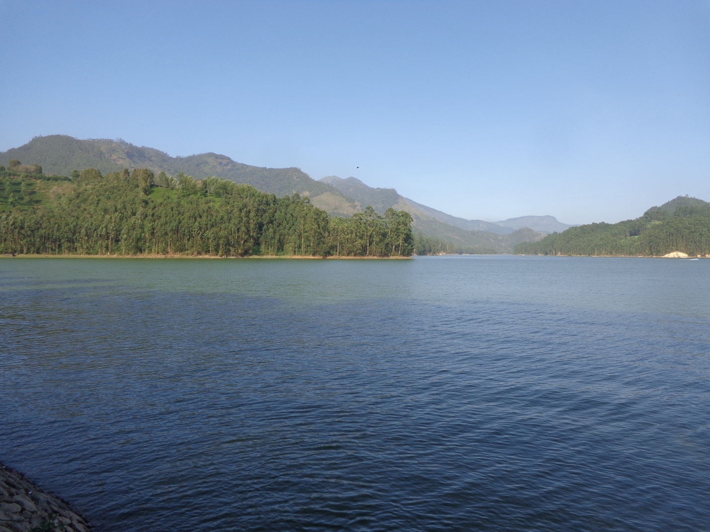 Munnar In A Nutshell – Tea And Tranquility In God's Own Country