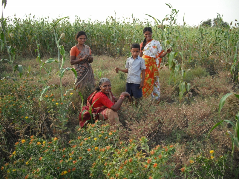Now, Free Legal Aid To Farmers, Especially Women Farmers, In Andhra Pradesh