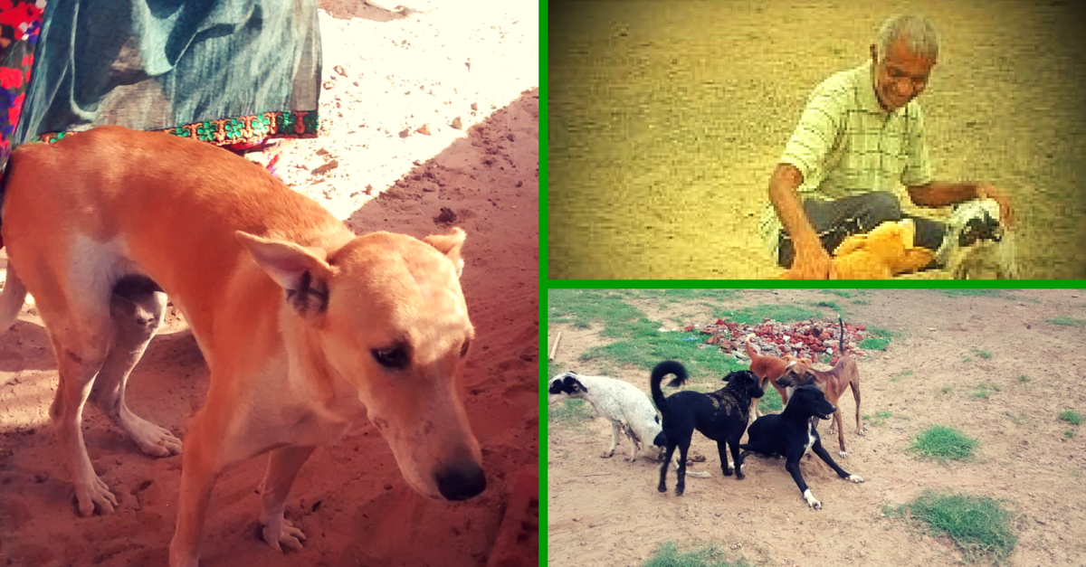 Meet Mahendra Shrimali, The Man Who Set up India's First Shelter for Dogs with Disabilities