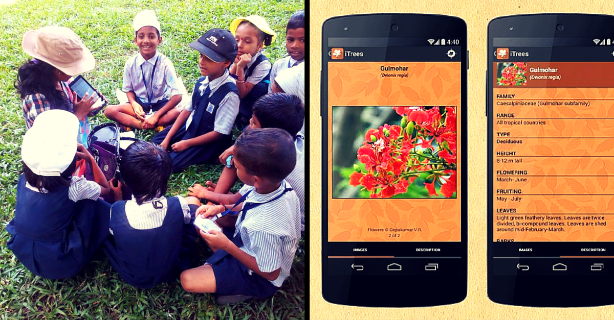 These 3 Apps Help You Identify Trees, Birds & Butterflies. And they Are Brilliant!