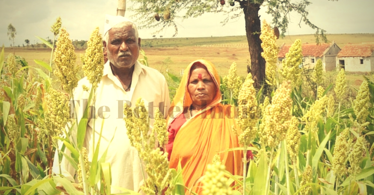 In Drought-Prone Maharashtra, This Farmer Leaves His Entire Crop for Birds to Feed On