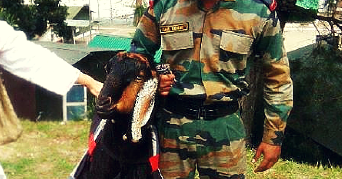 Meet Mastana, the Goat who is a Hawaldar in the Indian Army