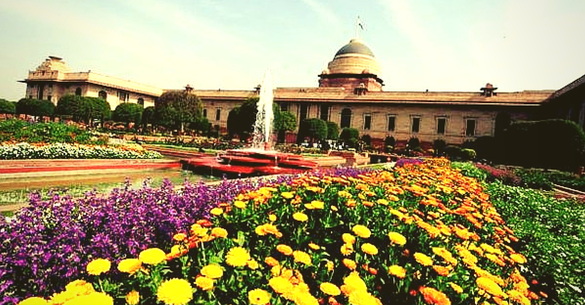 IN PICTURES: The Colourful Mughal Gardens Will Open for the Public Soon. Flower Lovers Ready?