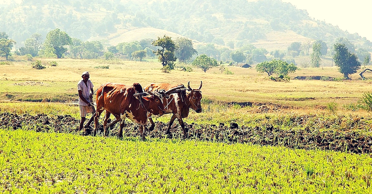 100 Farmers Receive Counselling for Clinical Depression in Suicide-Prone Maharashtra