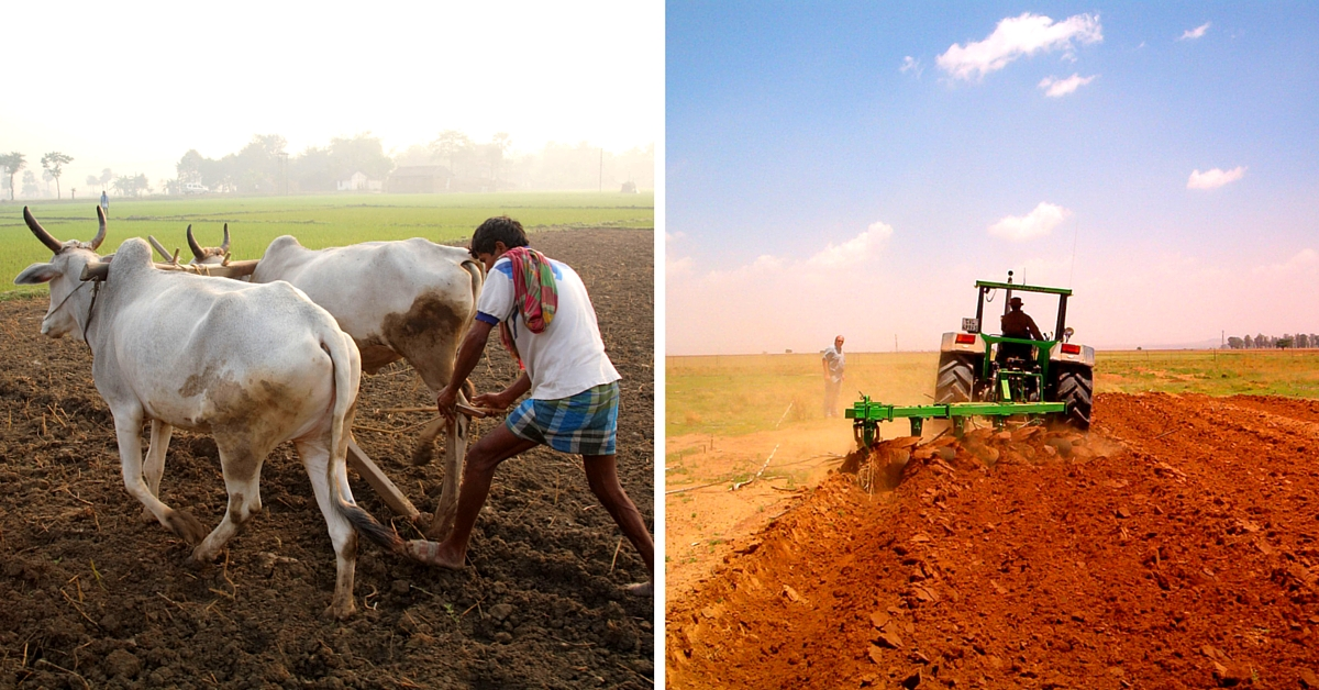 No-fuel Plough Invented by UP Farmer Costs Only Rs 3000, Beats Expensive Bullocks and Tractors