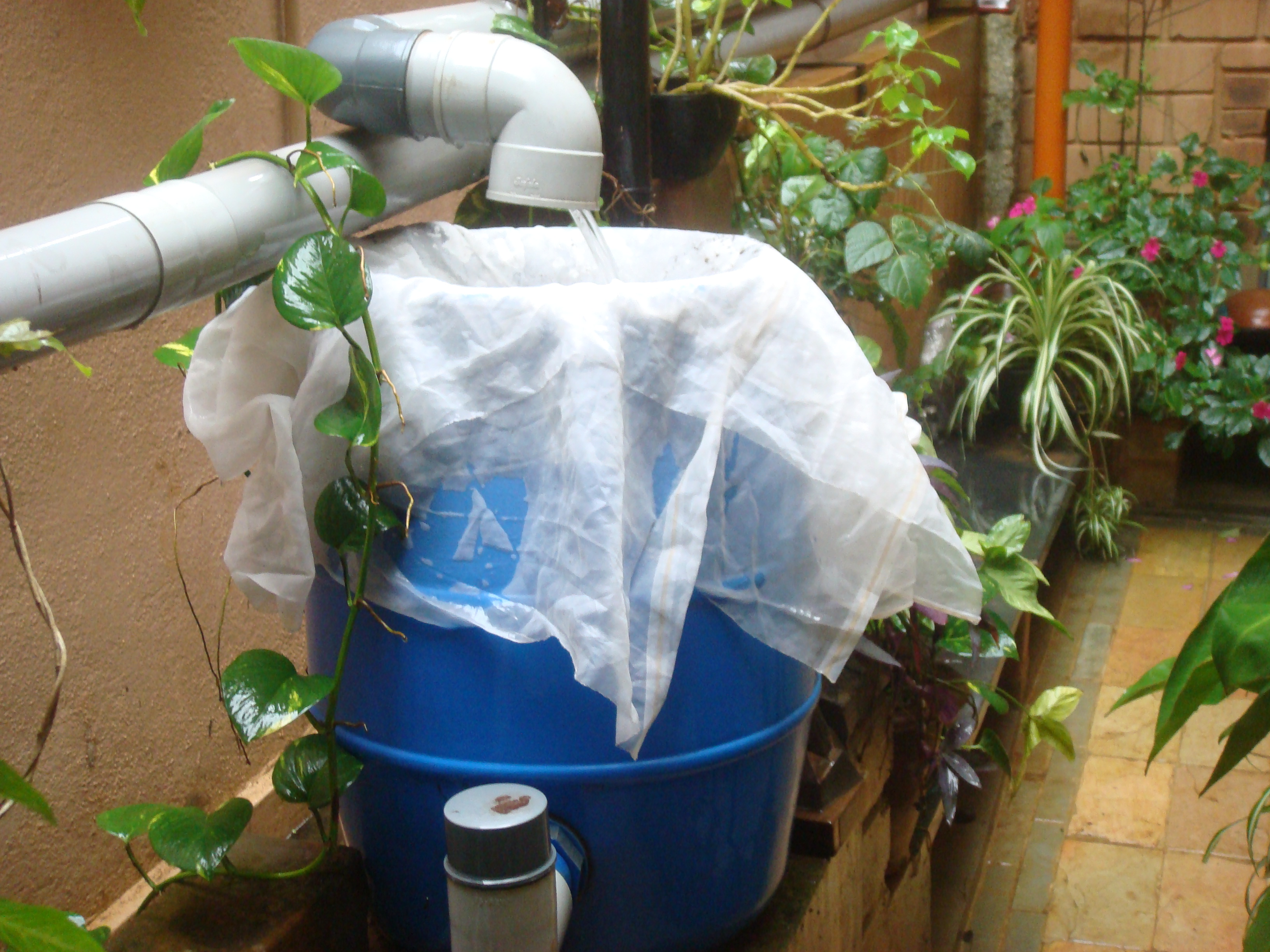 7 Great Techniques by Which You Can Easily Harvest Rainwater at Your Home This Monsoon
