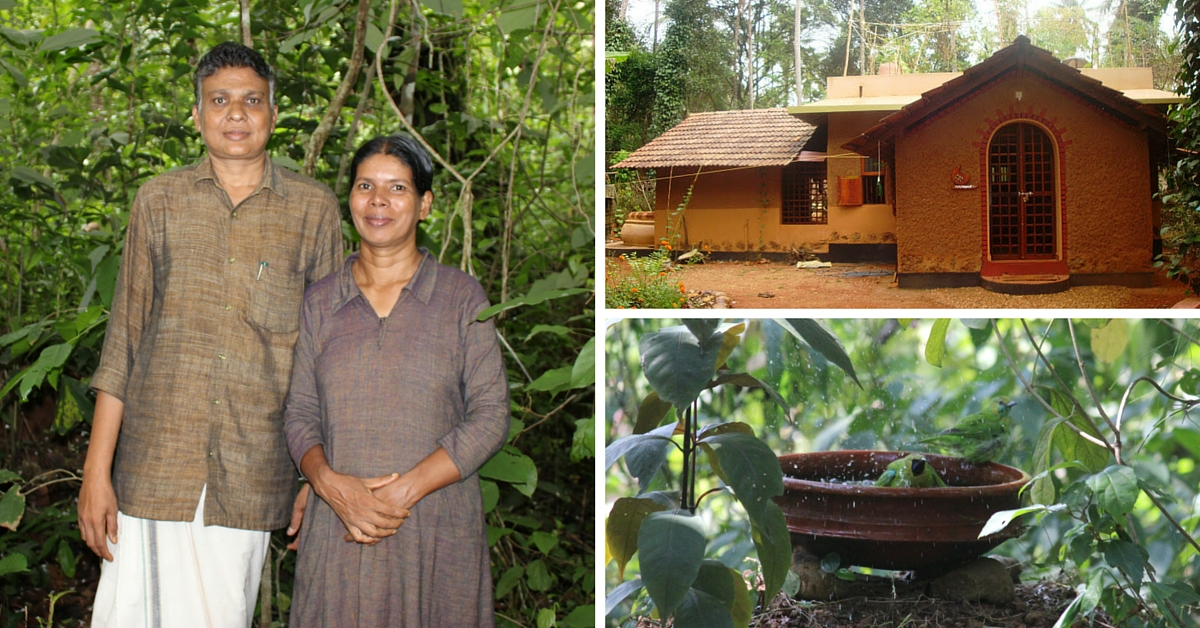 This Couple's Quest for Natural Living Has Resulted in a Mini Forest and an Energy Efficient Home