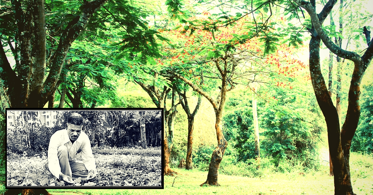 60-Year-Old Pune Resident Distributes 1 Lakh Saplings Every Year for Free