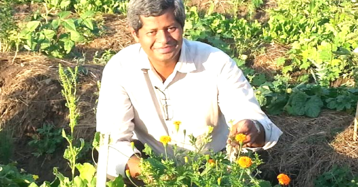 At the Age of 50, This Man Decided to Give up His Successful Business to Take up Farming