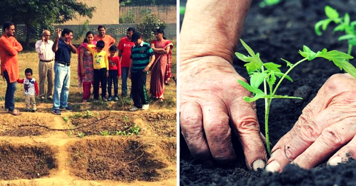 How Six Families Joined Hands to Grow Their Own Organic Food in Noida