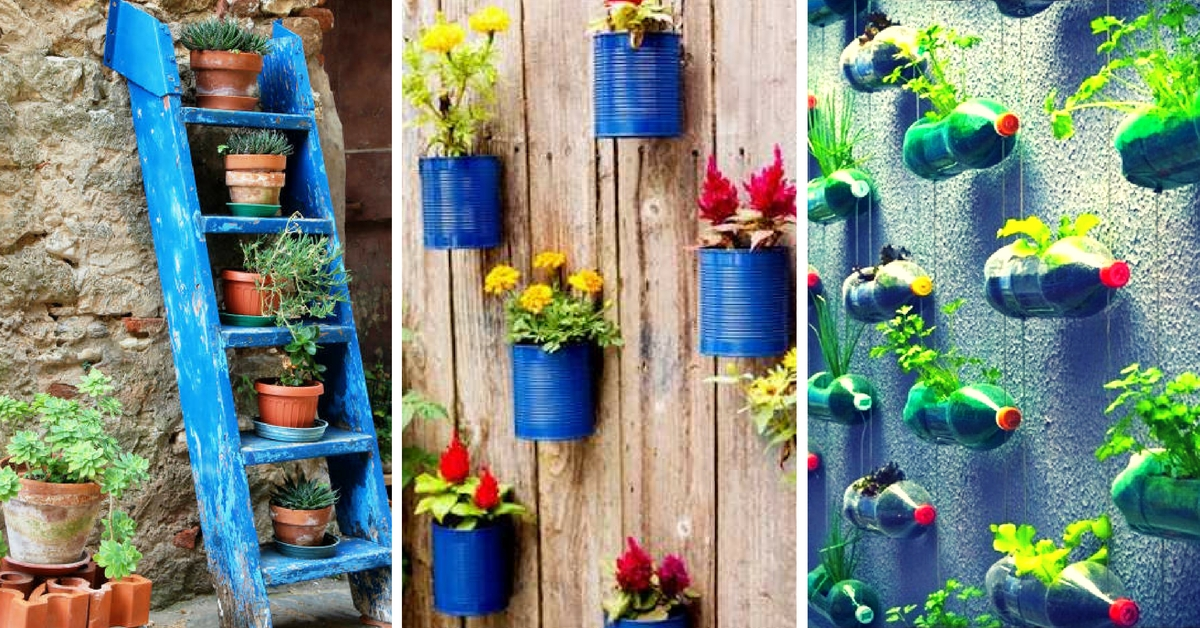 Here S How To Save Time And Space By Vertical Gardening At Home