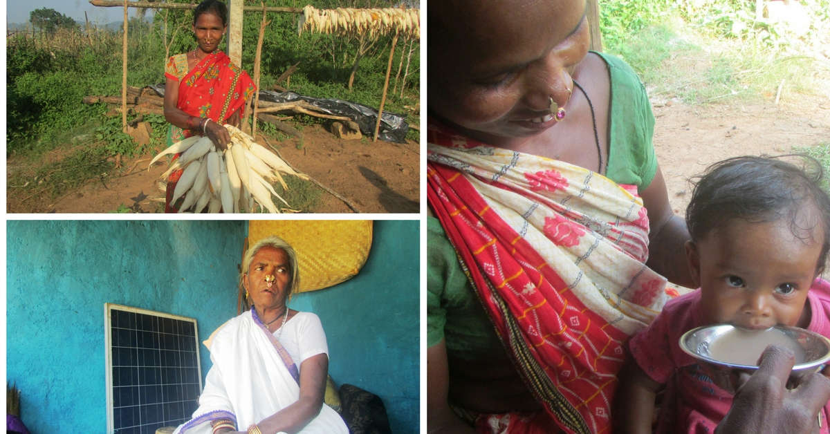 Why Odisha's Tribal Women Are Returning to Their Natural Roots for Guidance on Food