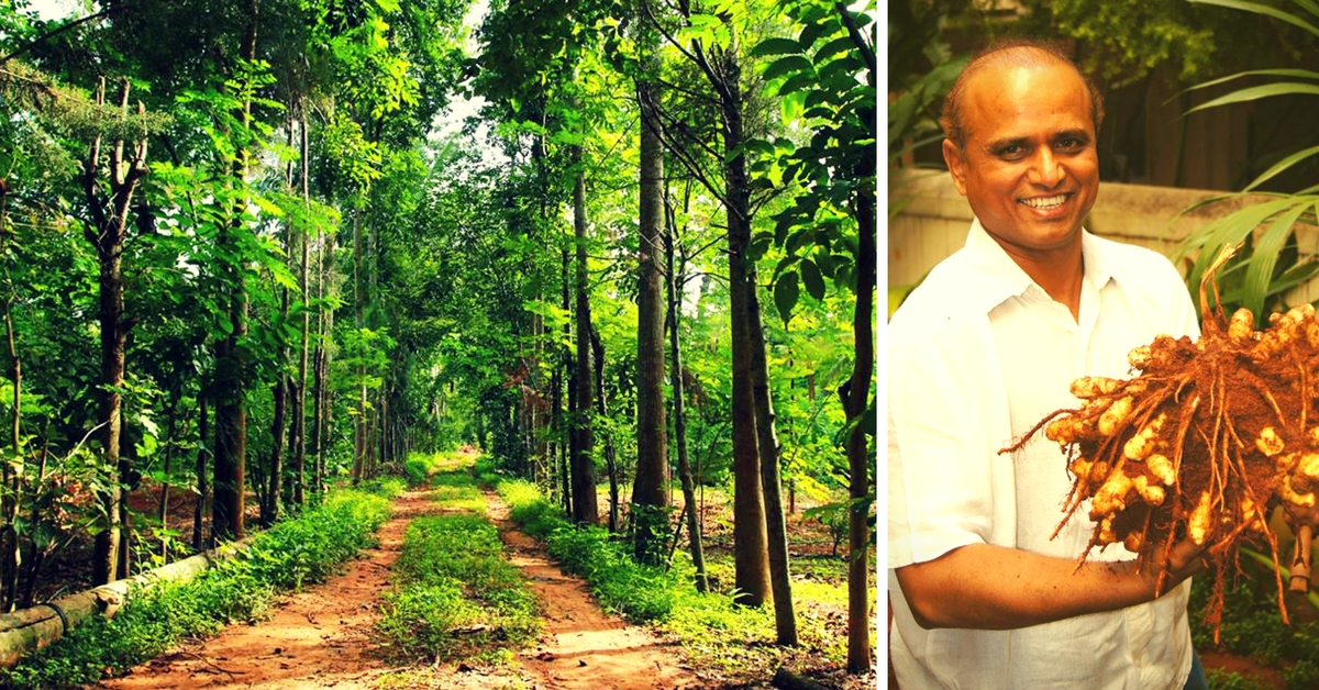 Meet the Bangalore Lawyer Who Quit His Job to Become an Organic Farmer, but Didn't Stop at That!