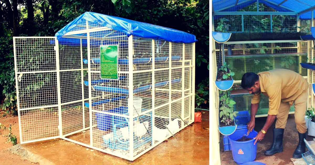 This Space-Savvy Integrated Farming Unit Lets You Grow Fish, Poultry & Vegetables Organically
