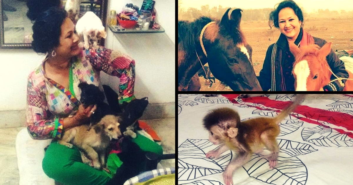 From Cats to Monkeys – This Bareilly Resident Has 46 Animals Living in Her Two-Bedroom Flat