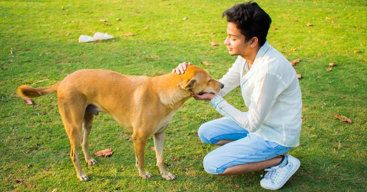 This 19-Year-Old Has Saved and Re-Homed 500+ Abandoned Animals. And He's Just Getting Started