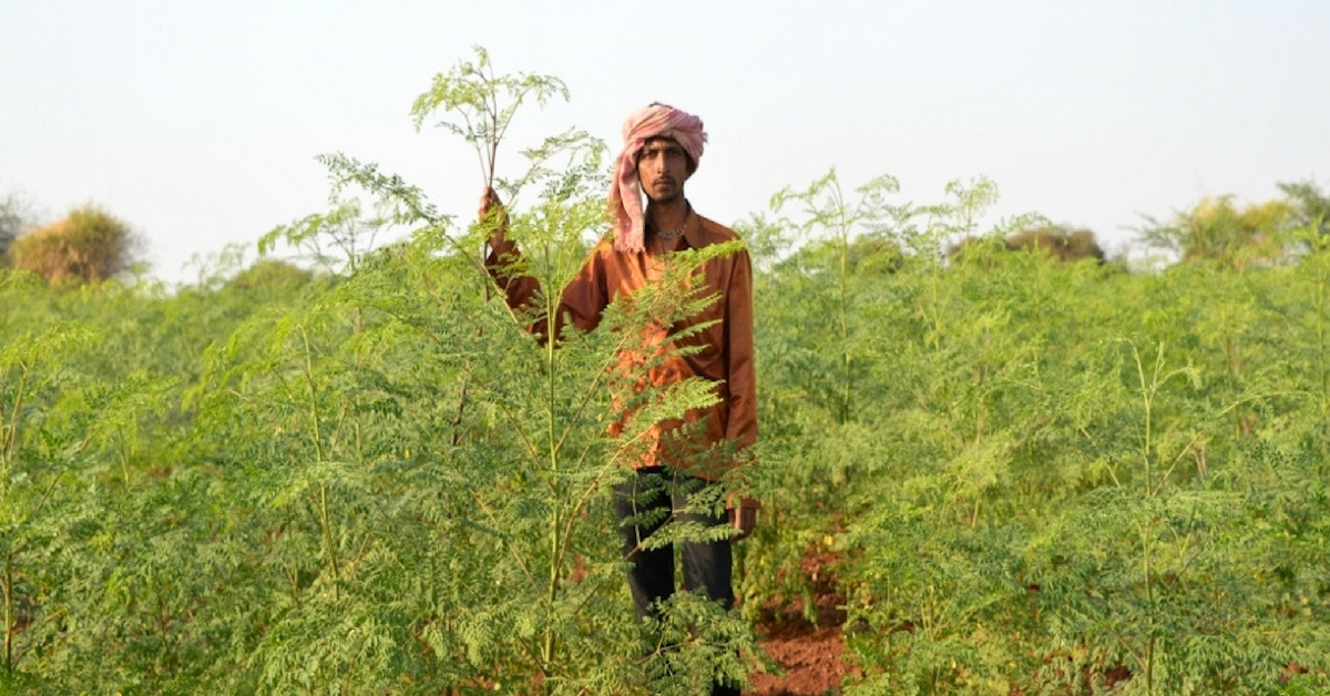 TBI Blogs: An Initiative Is Helping Thousands of Farmers Across Gujarat Discover Organic Farming