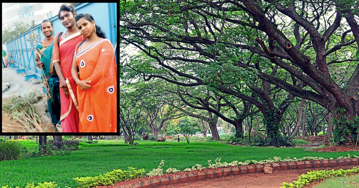 How a Group of Transgender Persons Adopted Trees to Save Them from the Axe in Mumbai
