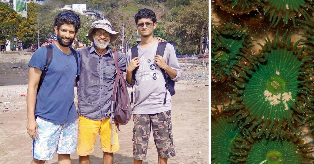Corals, Sea Anemones and Starfish in Mumbai? This Trio Will Tell You Where to Find Them!