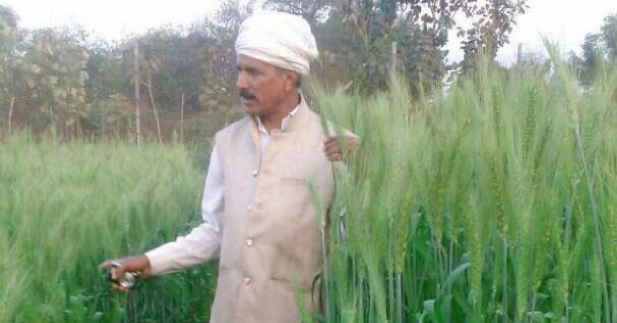 From School Dropout to Farmer-Scientist, This Man Has Developed 600+ Varieties of Native Seeds