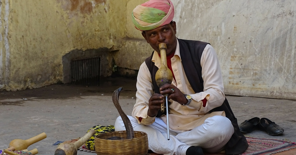 TBI Blogs: These Former Snake Charmers Used to Display Snakes for a Living. Today, They Help Protect Them