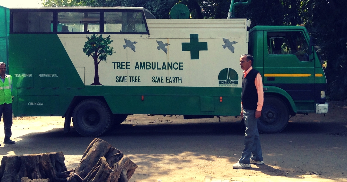 What Happens When Trees Fall Sick? In Delhi, an Ambulance Comes to Their Rescue