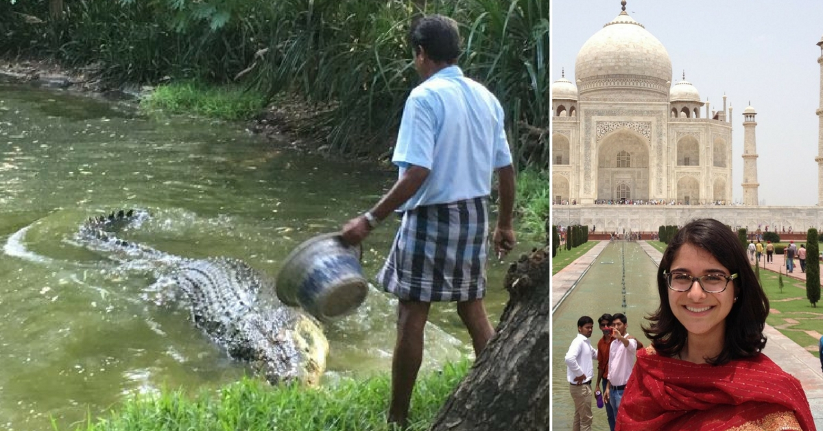 TBI Blogs: How I Discovered Fearlessness and Positivity at Tamil Nadu's Crocodile Bank