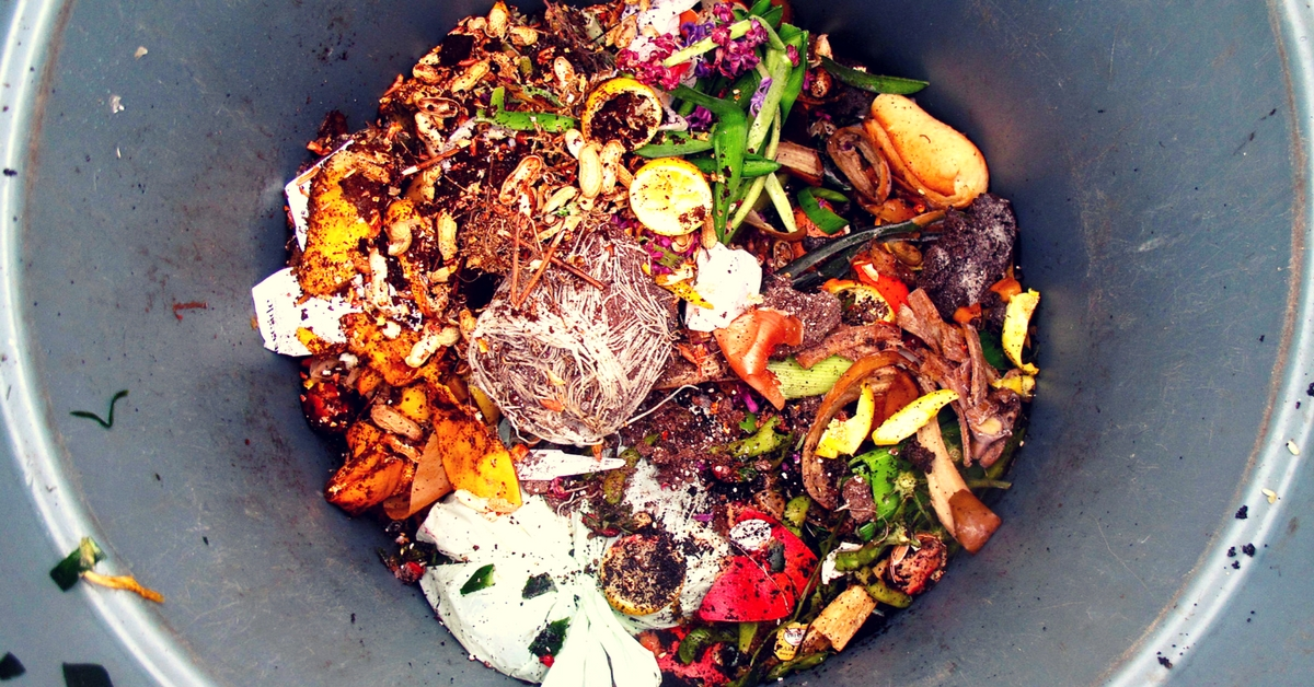 How Moving to India Forced Me to Confront My Food Waste Woes and Helped Me Become More Green!