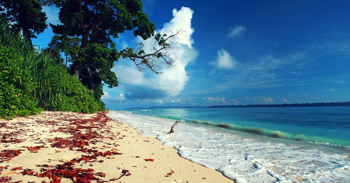 Pack Your Bags & Head to Havelock: We Give You 7 Reasons Why