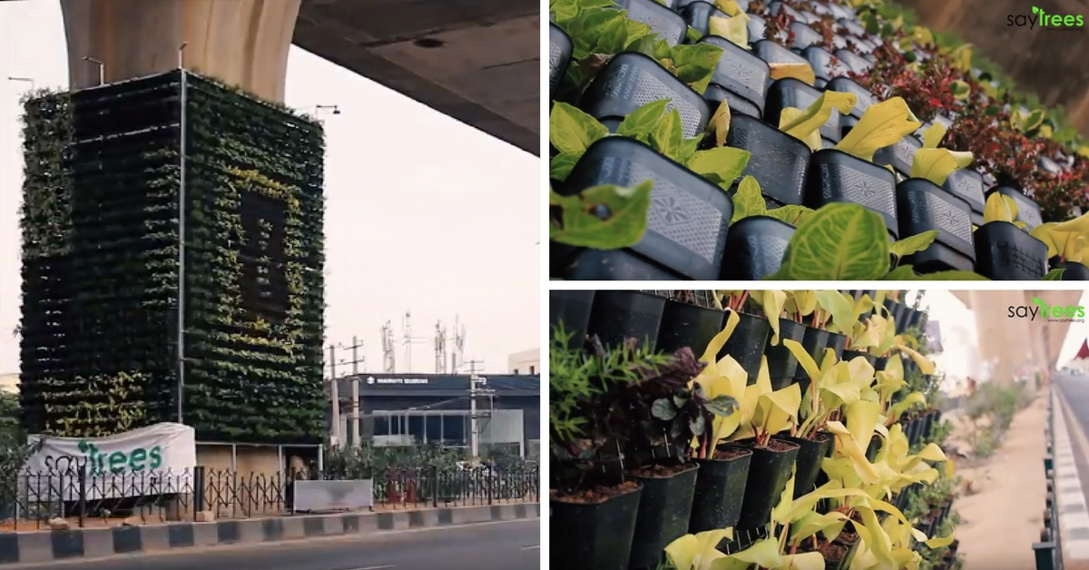 Bengaluru Going Green Again! Second Vertical Garden Finds Its Place in the Garden City!