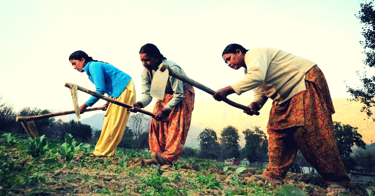 How 3 All-Women Farmer Service Companies Are Empowering Over 2,756 Farmers in Vikarabad!