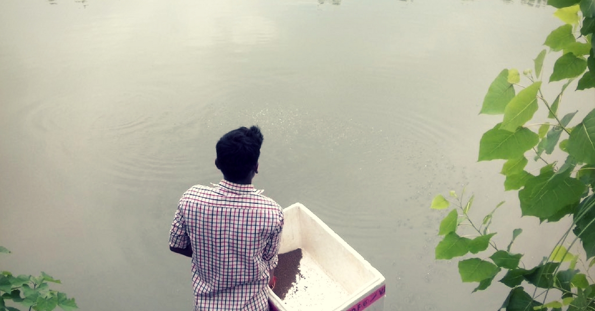 Wetlands Are 'Wastelands'? Here's How One Bihar Village Proved Us All Wrong