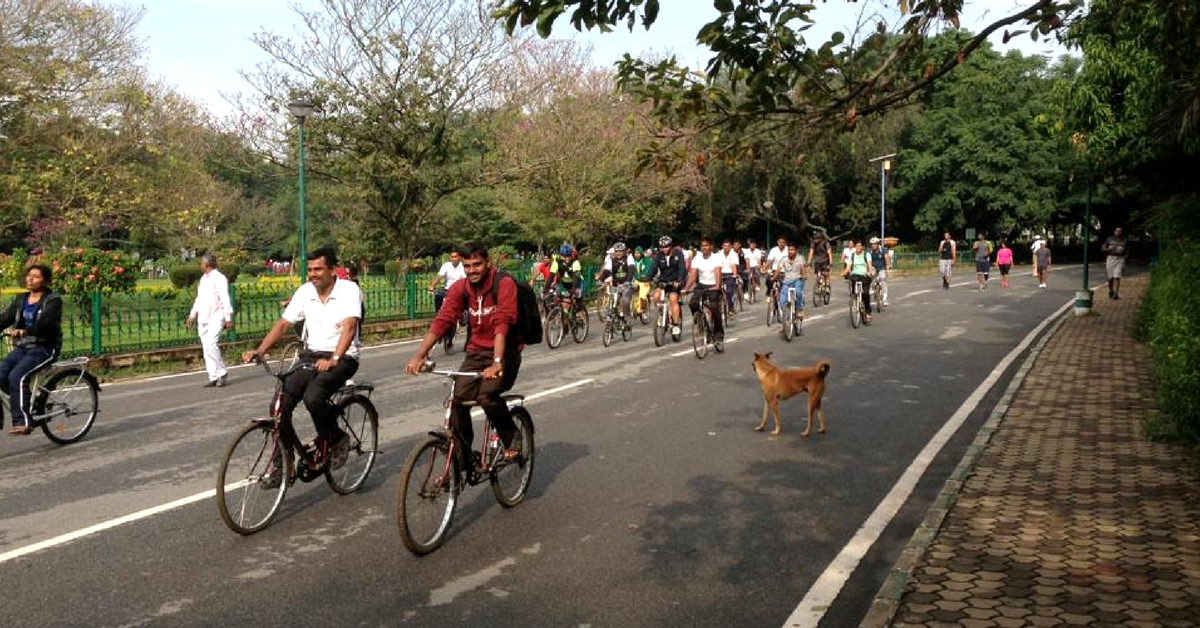Fitness on Wheels: Bengaluru's Cubbon Park to Soon Introduce Cycles for Rent