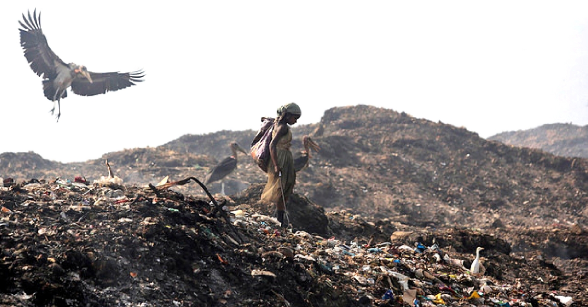 Here's How Officials Will Clear Garbage from Chennai's Largest Toxic Dumpyard