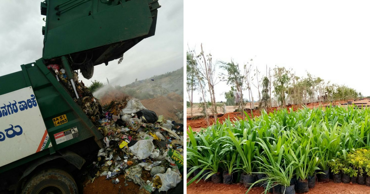 How This Bengaluru Quarry Went From Garbage Dump to Beautiful Park