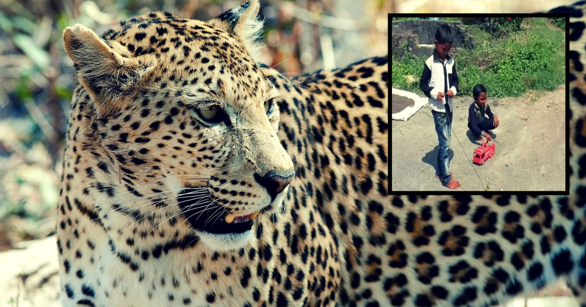 Amazing! This 7-Year-Old Boy From Gujarat Rescued His Friend From a Leopard Attack