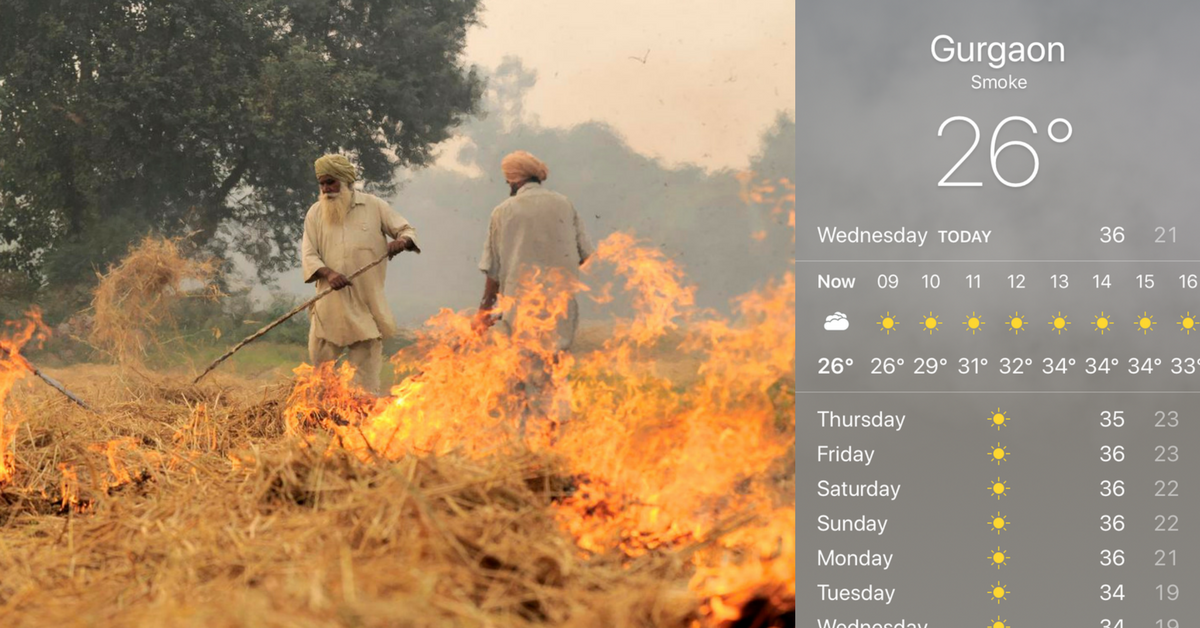 If You Live in the Delhi/NCR Region, Here's How You Can Combat Air Pollution