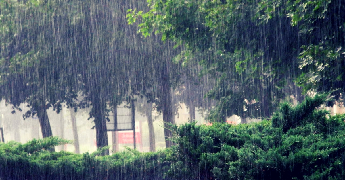 Heavy Rainfall. Picture for representative purposes only. Picture Courtesy: Wikimedia Commons.