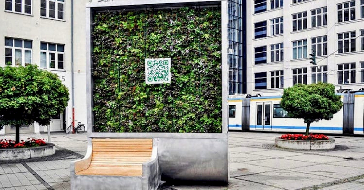 Solution To Delhi's Smog Problem: This Moss Wall 'Eats' As Much Polluted Air As A Small Forest