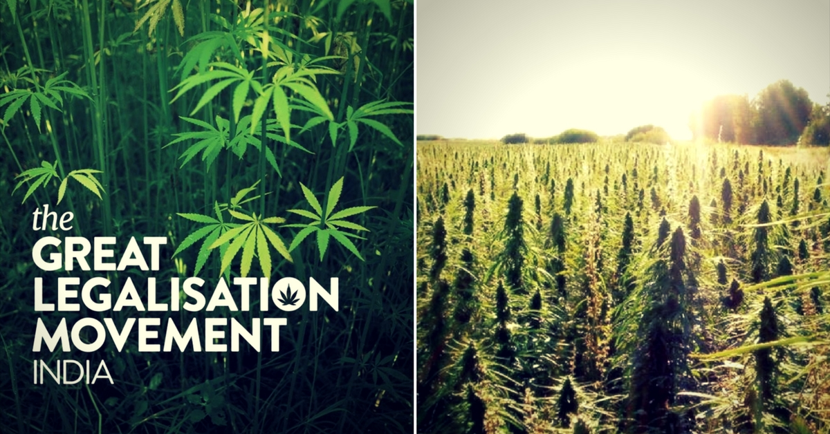 Banned by American Pressure, These People Now Want Marijuana to Get a Second Chance in India
