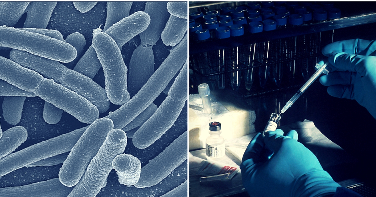 100 People in Oxford Swallowed Bacteria to Make This Breakthrough Vaccine for India