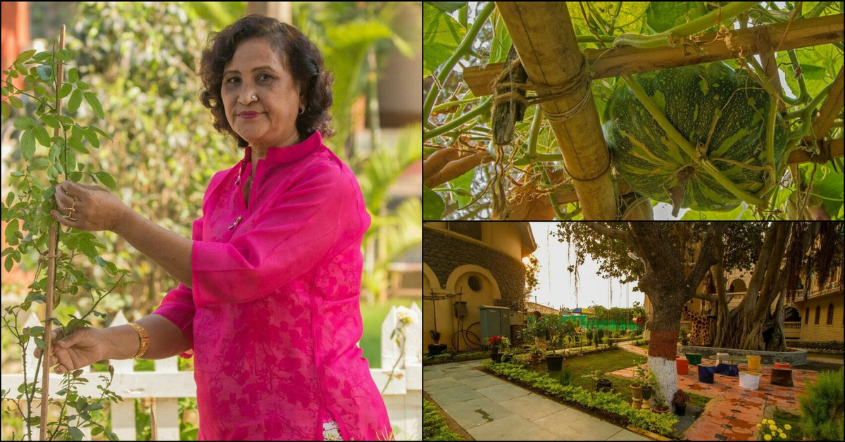 This Woman Didn't Let Age Stop Her From Creating a Gorgeous Organic Garden