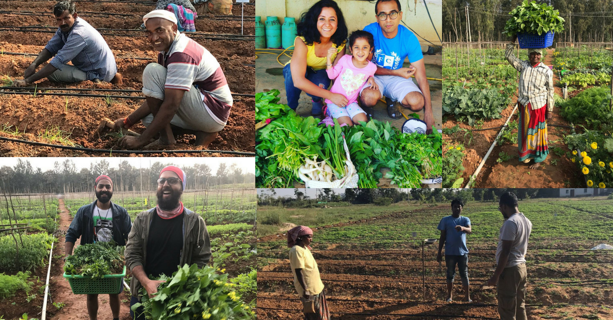 Want a Farm of Your Own? Get This App to Make That Dream Come True