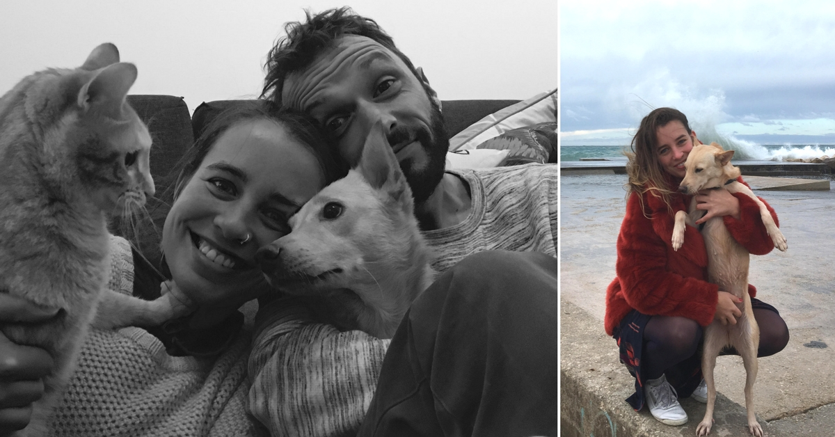 The Adventures of Rani, the Mumbai Stray Who Found a Loving Family in France