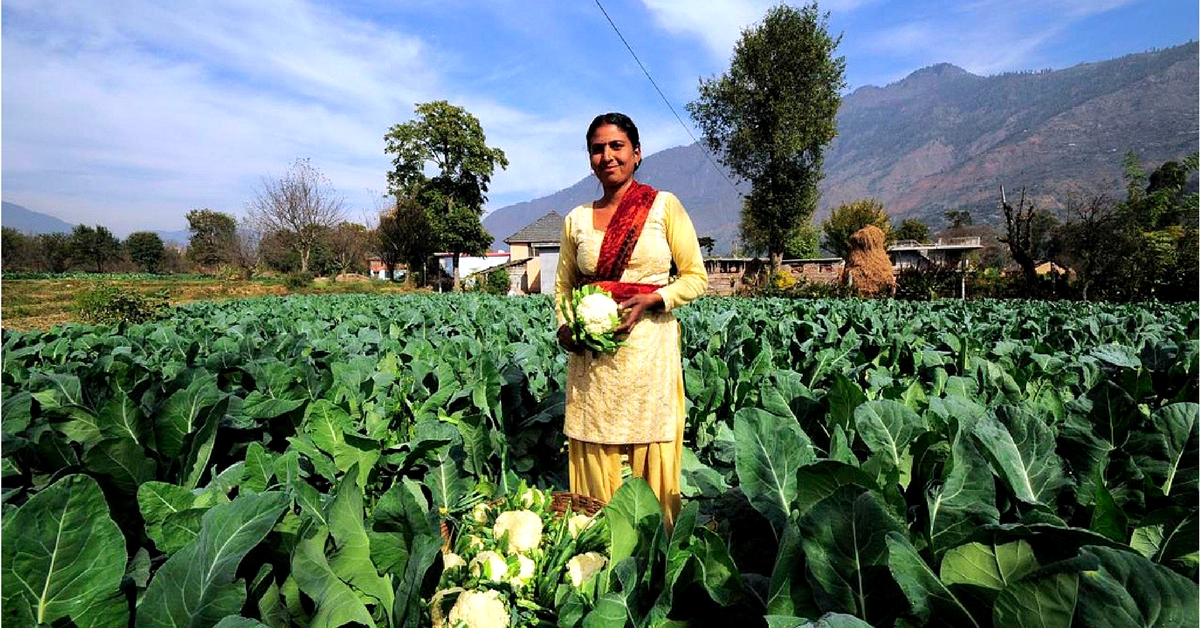 An Organic Future: India Has Over 30% Of World's Organic Producers!