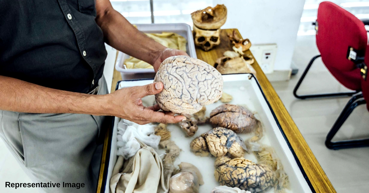 In Haryana, An 'Indian Brain Template' Is Being Made: All You Need To Know